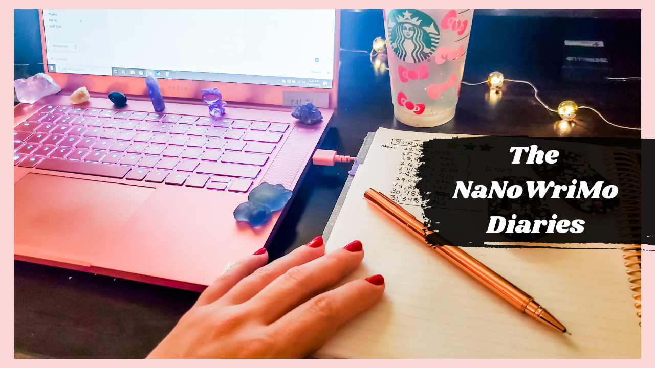 Have you won NaNoWriMo? It's the final stretch!!